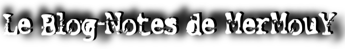 Le Blog-Notes de MerMouY