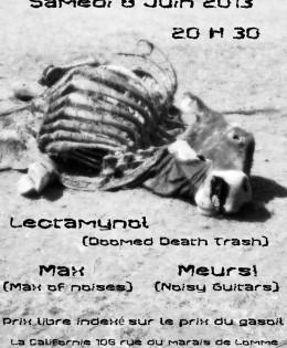 Lectamynol + Meurs! + Max